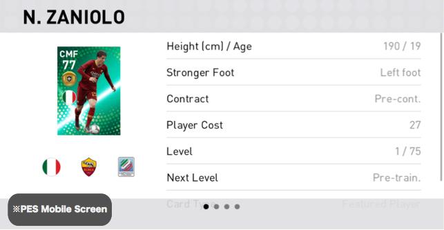 (FP) Nicolò Zaniolo Player Details