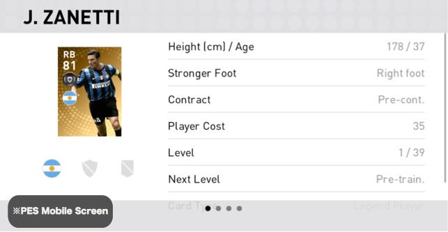 Javier Zanetti Player Detail