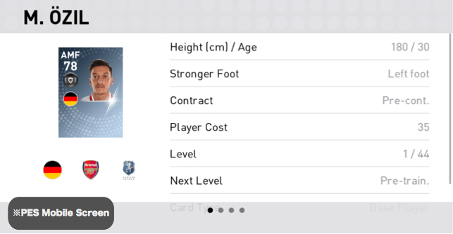 Mesut Özil Player Detail